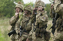British Army Reserves
