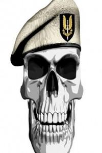 SAS skull wearing beret-C